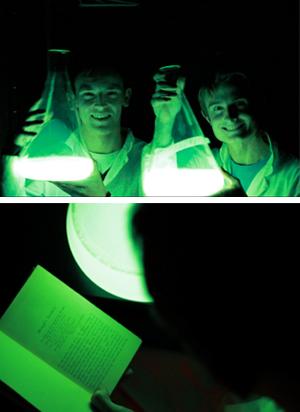 Studerende fra Cambridge oplyst af deres bakterie-lampe