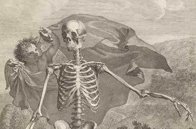 anatomi-skelet.jpg